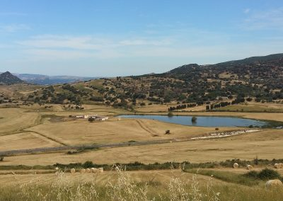 Countryside, Sardegna