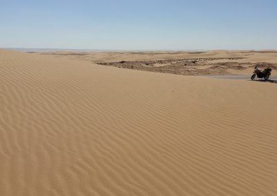 On the way to the dunes of Khenifiss